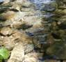 Wasser_1